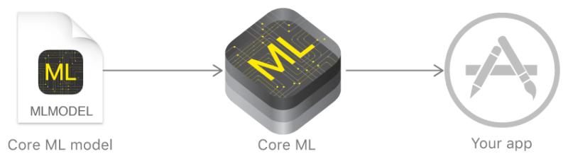 Utilisation de Core ML afin d'intégrer de l'intelligence artificielle dans une application