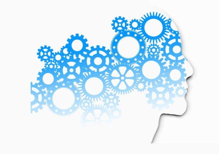 Une équipe internationale crée la première modélisation de la psychologie humaine