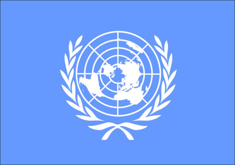 Les plus grands spécialistes de l'IA et de la robotique alertent les Nations Unies