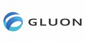 Gluon Deep Learning
