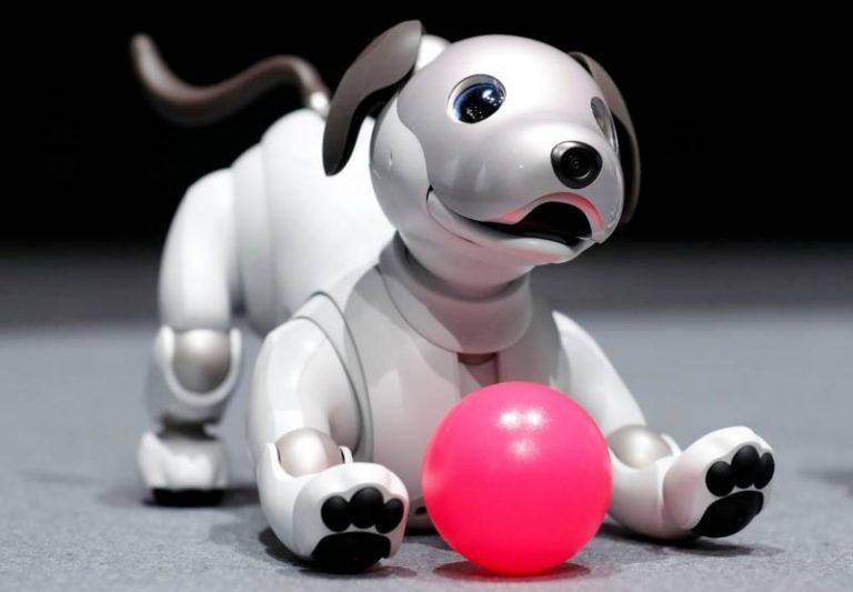 Le robot AIBO de Sony revient dans une toute nouvelle version