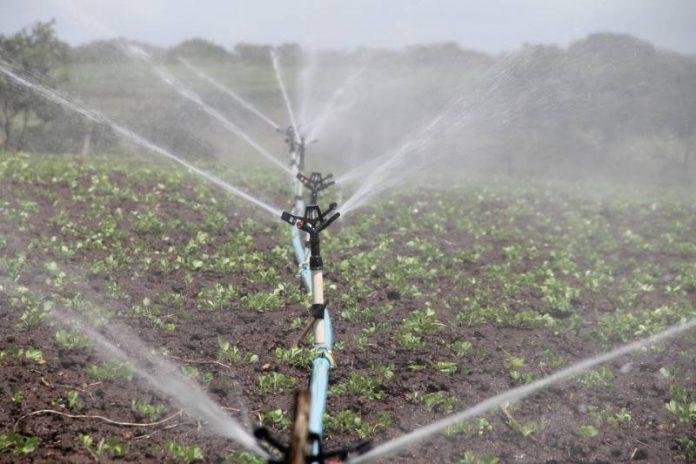 irrigation-588941_960_720