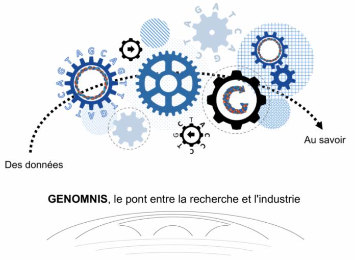 GenOmnis_1600px-1170×855