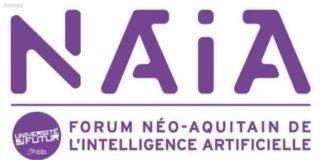 bandeau logo NAIA.jpg