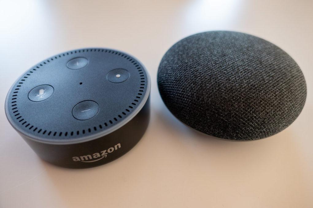Amazon Echo Dot & Google Home Mini