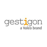 Gestigon