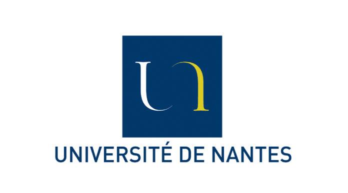 Université de Nantes IA