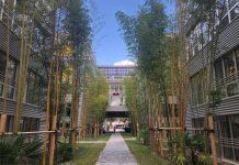 Ecole IA Microsoft Bordeaux