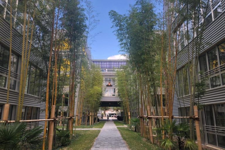 Microsoft inaugure sa nouvelle Ecole IA Microsoft et lance un experiences Lab