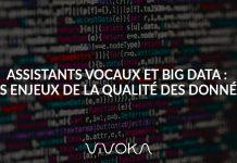 ASSISTANTS-VOCAUX-BIG-DATA