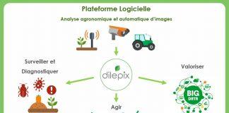 dilepix-plateforme-logicielle