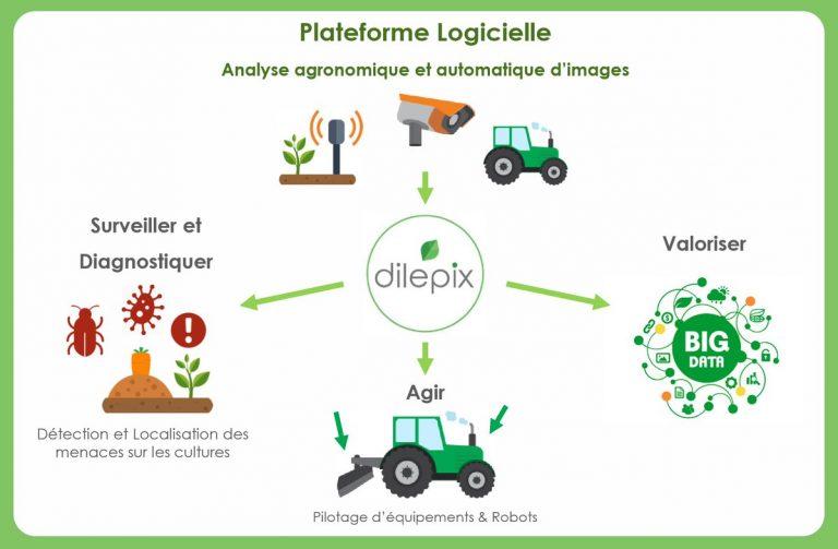 AgTech : Dilepix sélectionnée pour NETVA et AgriNEST, deux programmes d'accompagnement en Amérique du Nord