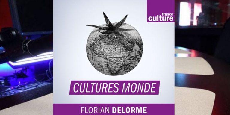 Replay – Intelligence artificielle : vers un nouvel ordre international ? Cultures Monde sur France Culture