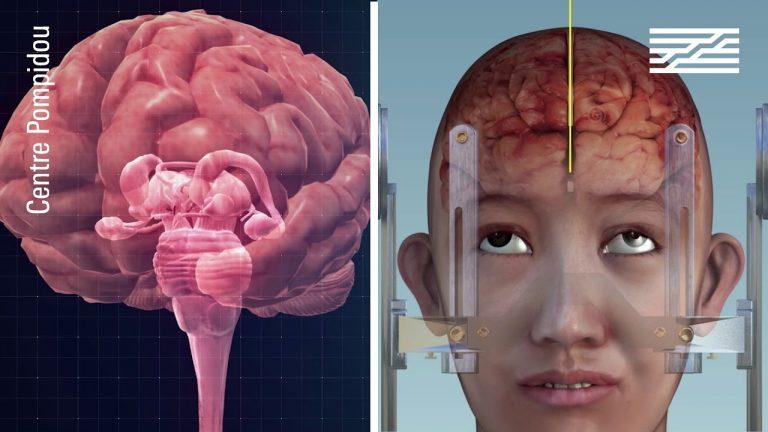 « Neurones, les intelligences simulées » – la nouvelle exposition du Centre Pompidou