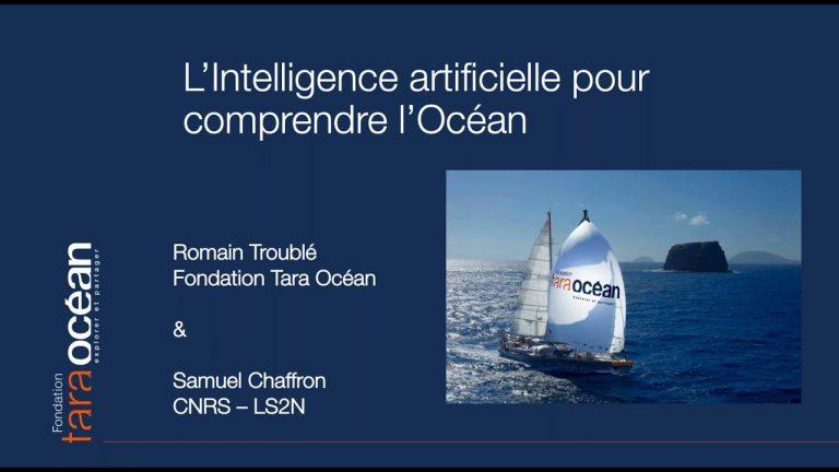 Replay webinaire : L'intelligence artificielle pour comprendre l'Océan