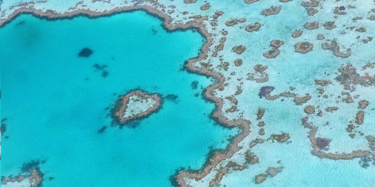 Journée mondiale de l'océan : L'UNESCO présente des cas d'usage de la technologie pour un océan durable