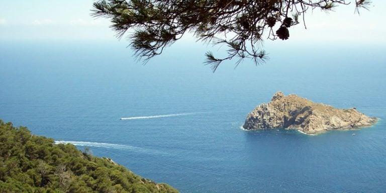 Le Parc national de Port-Cros et BSB Marine développent une IA pour la préservation des aires marines protégées