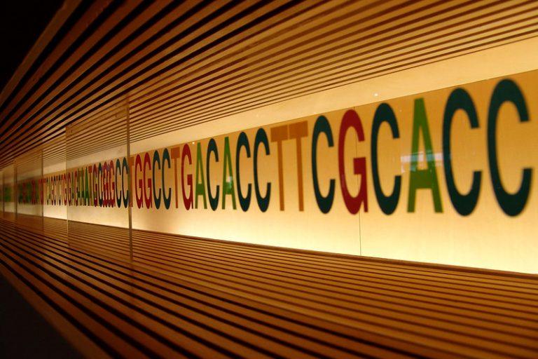 Décrypter notre génome grâce àl'intelligence artificielle de Julien Mozziconacci et Etienne Routhier