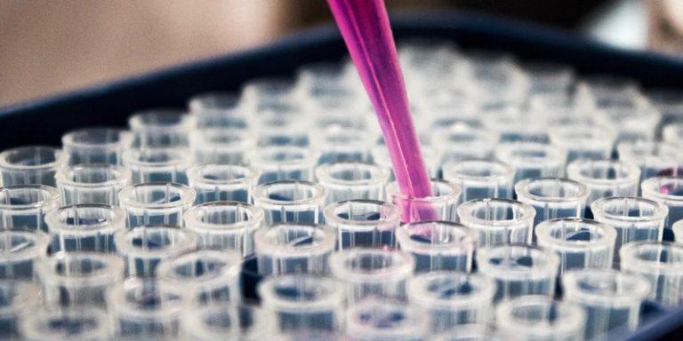 Généthon et WhiteLab Genomics vont collaborer afin d'utiliser l'IA dans le cadre de la thérapie génique