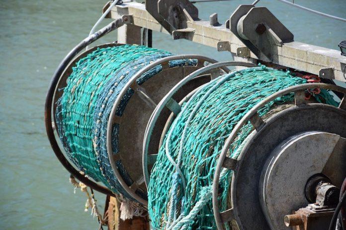 Deep fish pêche