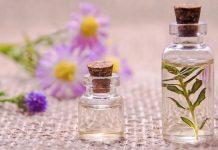 odeuropa projet européen horizon 2020 base données olfactive