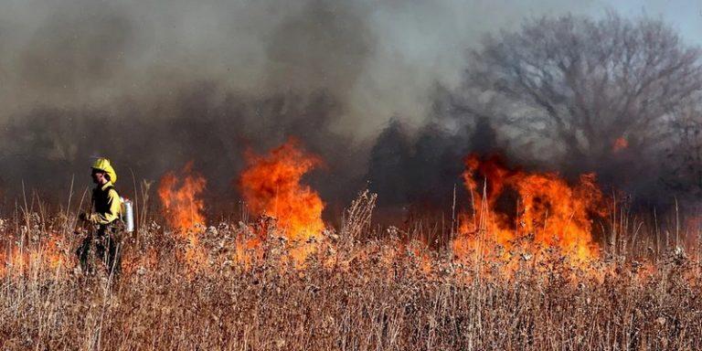 RADRFIRE : un outil interactif utilisant satellites et IA pour aider les pompiers à lutter contre les feux de forêts