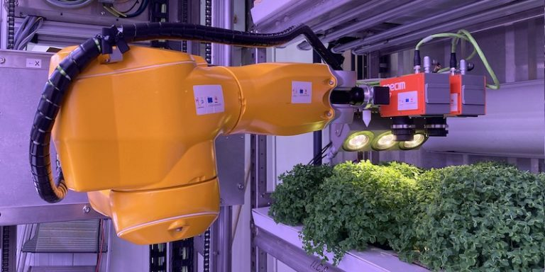 Focus sur OptiBiomasse, projet mêlant agronomie à valeur médicale ajoutée et intelligence artificielle